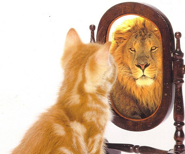 Are you seeing yourself the way others see you?